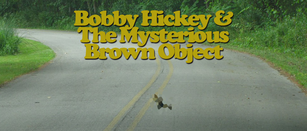 Bobby Hickey and the Mysterious Brown Object